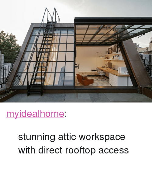 """workspace: <p><a href=""""http://myidealhome.vintageblackboard.com/post/107780601604/stunning-attic-workspace-with-direct-rooftop"""" class=""""tumblr_blog"""">myidealhome</a>:</p>  <blockquote><p>stunning attic workspace with direct rooftop access</p></blockquote>"""