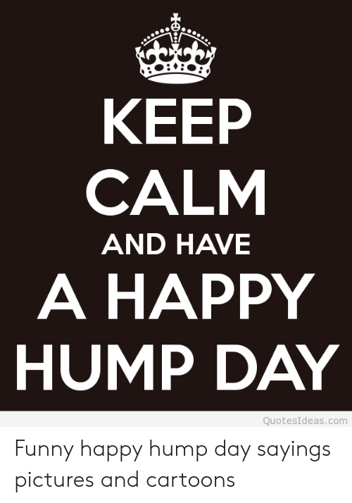 🐣 best memes about funny happy hump day funny happy hump