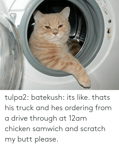 Drive: |५ tulpa2: batekush: its like. thats his truck and hes ordering from a drive through at 12am chicken samwich and scratch my butt please.