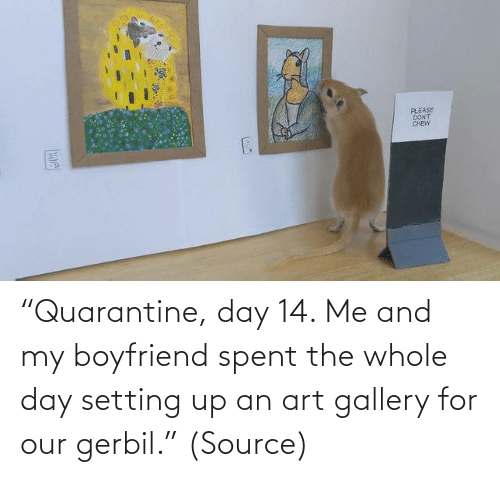 "Boyfriend: ""Quarantine, day 14. Me and my boyfriend spent the whole day setting up an art gallery for our gerbil."" (Source)"
