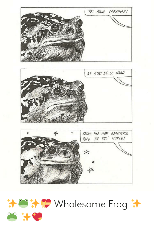 Wholesome: ✨🐸✨💝 Wholesome Frog ✨🐸 ✨💖
