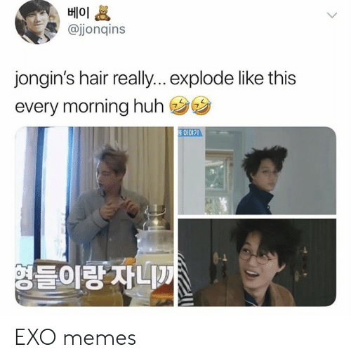 Huh, Memes, and Hair: 베이  @jjonqins  jongin's hair reall... explode like this  every morning huh  영들이랑 자니까 EXO memes