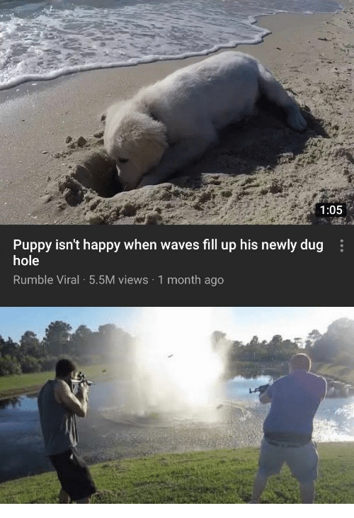 fill up: 1:05  Puppy isn't happy when waves fill up his newly dug  hole  Rumble Viral 5.5M views 1 month ago