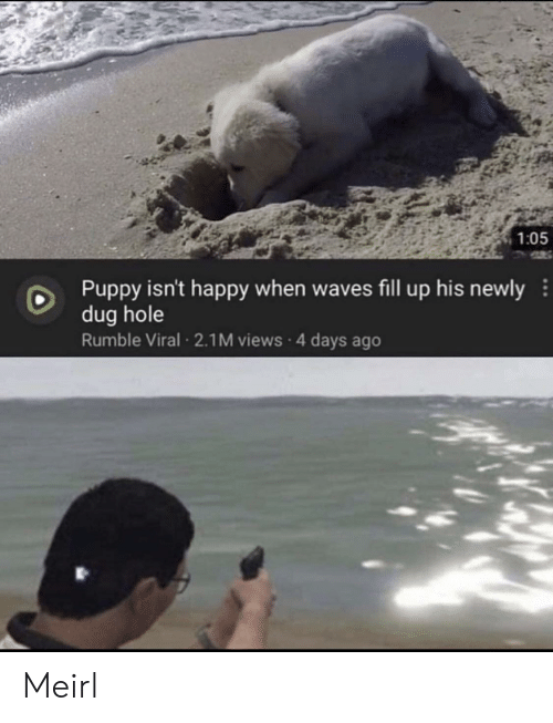 fill up: 1:05  Puppy isn't happy when waves fill up his newly  dug hole  Rumble Viral 2.1M views 4 days ago Meirl
