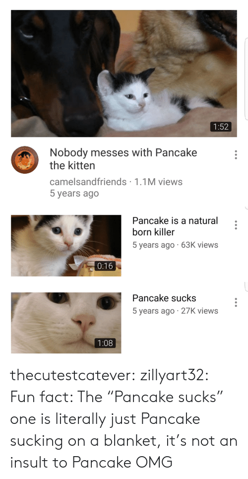"pancake: 1:52  Nobody messes with Pancake  the kitten  camelsandfriends 1.1M views  5 years ago   Pancake is a natural  born killer  5 years ago 63K views  0:16   Pancake sucks  5 years ago 27K views  1:08 thecutestcatever:  zillyart32:  Fun fact: The ""Pancake sucks"" one is literally just Pancake sucking on a blanket, it's not an insult to Pancake  OMG"