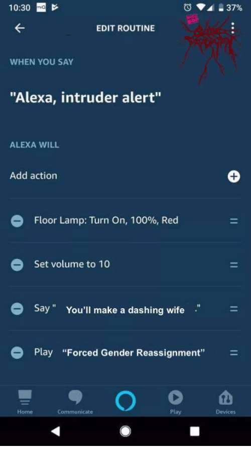"""Anaconda, Home, and Wife: 10:30 E  EDIT ROUTINE  WHEN YOU SAY  """"Alexa, intruder alert""""  ALEXA WILL  Add action  Floor Lamp: Turn On, 100%, Red  Set volume to 10  Say"""" You'll make a dashing wife  Play """"Forced Gender Reassignment""""  Home  Communicate  Devices"""