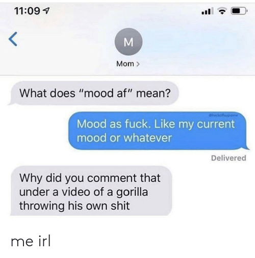 """Af, Mood, and Shit: 11:09  Mom  What does """"mood af"""" mean?  heckaffup  Mood as fuck. Like my current  mood or whatever  Delivered  Why did you comment that  under a video of a gorilla  throwing his own shit  M me irl"""