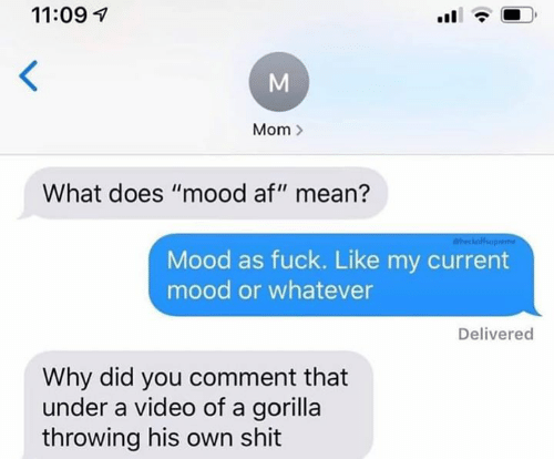 """Af, Mood, and Shit: 11:09  Mom  What does """"mood af"""" mean?  heckofup  Mood as fuck. Like my current  mood or whatever  Delivered  Why did you comment that  under a video of a gorilla  throwing his own shit  M"""