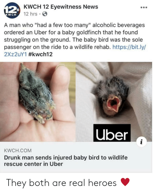 """passenger: 12KWCH 12 Eyewitness News  12 hrs  KWCH  A man who """"had a few too many"""" alcoholic beverages  ordered an Uber for a baby goldfinch that he found  struggling on the ground. The baby bird was the sole  passenger on the ride to a wildlife rehab. https://bit.ly/  2X 2UY1 #kwch12  