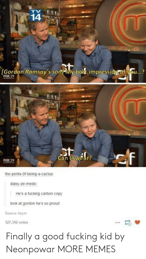 Dank, Fucking, and Memes: 14  Gordon Ramsay's sonMy best impressidgrof you...?  FOX 29  Can TswEar  FOX 29  the-perks-Of-being-a-cactus.  daisy-ze-medic  He's a fucking carbon copy  look at gordon he's so proud  Source hsynm  527,342 notes  HO Finally a good fucking kid by Neonpowar MORE MEMES