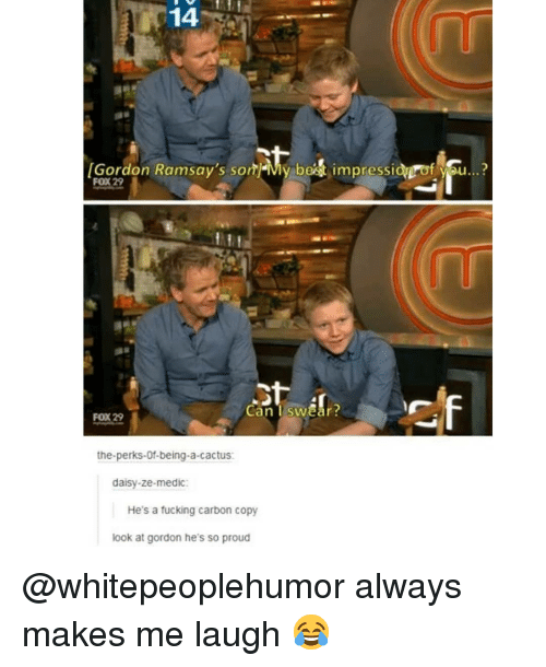 Fucking, Memes, and Best: 14  Gordon Ramsay's sonMy best impressionof vau...?  FOX 29  Can I swear?  FOX 29  the-perks-Of-being-a-cactus  daisy-ze-medic:  He's a fucking carbon copy  look at gordon he's so proud @whitepeoplehumor always makes me laugh 😂