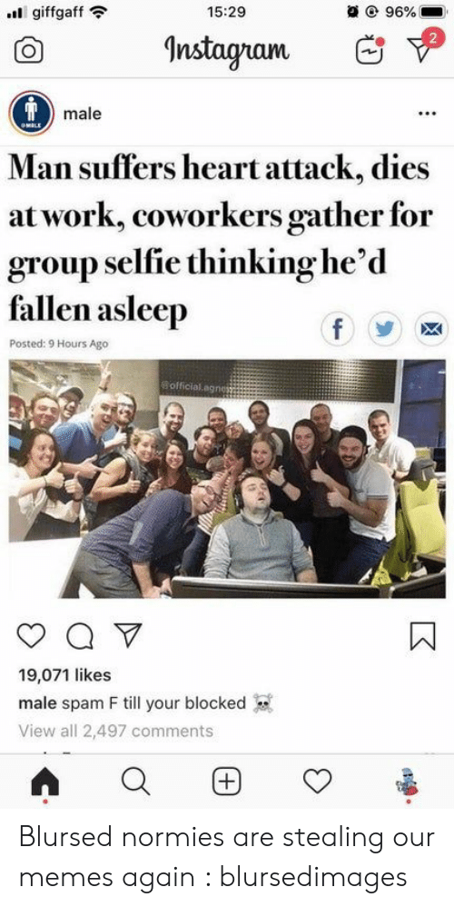 selfie: 15:29  @ 96%  giffgaff  Instagram  Tmale  OMALE  Man suffers heart attack, dies  at work, coworkers gather for  group selfie thinking he'd  fallen asleep  f  Posted: 9 Hours Ago  Bofficial.agnes  Q V  19,071 likes  male spam F till your blocked  View all 2,497 comments  (+ Blursed normies are stealing our memes again : blursedimages