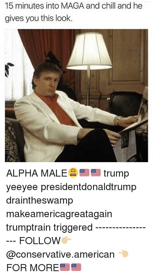 Yeeyee: 15 minutes into MAGA and chill and he  gives you this look ALPHA MALE😩🇺🇸🇺🇸 trump yeeyee presidentdonaldtrump draintheswamp makeamericagreatagain trumptrain triggered ------------------ FOLLOW👉🏼 @conservative.american 👈🏼 FOR MORE🇺🇸🇺🇸