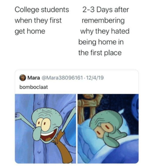 4 19: 2-3 Days after  remembering  College students  when they first  why they hated  get home  being home in  the first place  Mara @Mara38096161· 12/4/19  bomboclaat