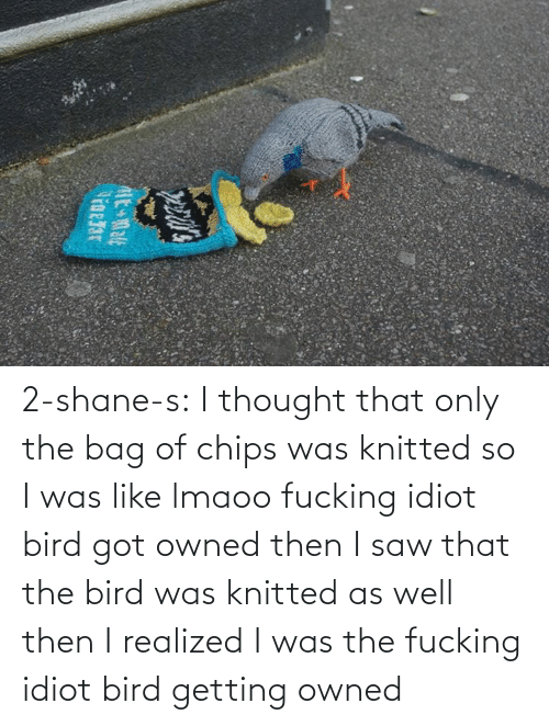 bird: 2-shane-s: I thought that only the bag of chips was knitted so I was like lmaoo fucking idiot bird got owned then I saw that the bird was knitted as well then I realized I was the fucking idiot bird getting owned