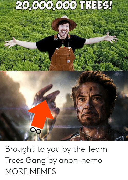 anon: 20,000,000 TREES! Brought to you by the Team Trees Gang by anon-nemo MORE MEMES