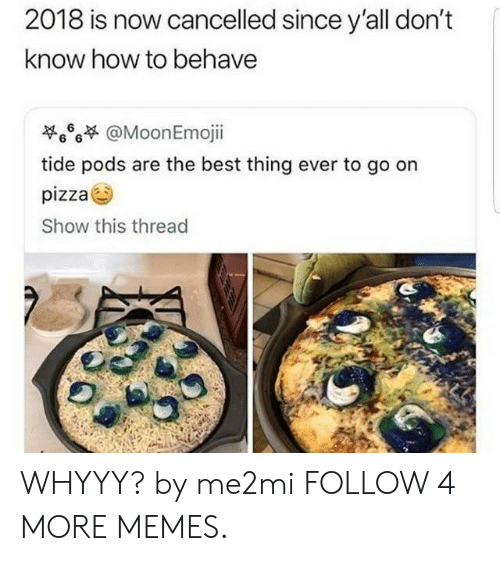 whyyy: 2018 is now cancelled since y'all don't  know how to behave  @MoonEmojii  6  6 6  tide pods are the best thing ever to go on  pizza  Show this thread WHYYY? by me2mi FOLLOW 4 MORE MEMES.