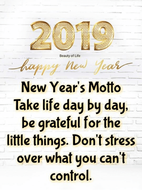 Life, Memes, and Control: 2019  Beauty of Life  New Year's Motto  Take life day by day,  be grateful for the  little things. Don't stress  over what you can't  control.
