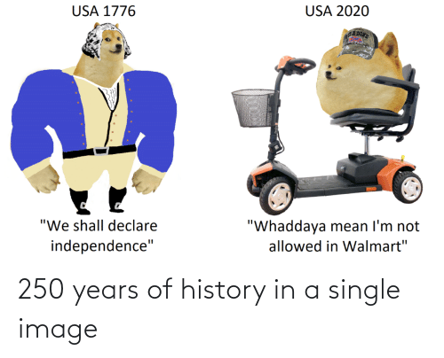 Single: 250 years of history in a single image