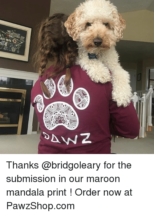 Memes, 300, and Mandala: 300 Thanks @bridgoleary for the submission in our maroon mandala print ! Order now at PawzShop.com
