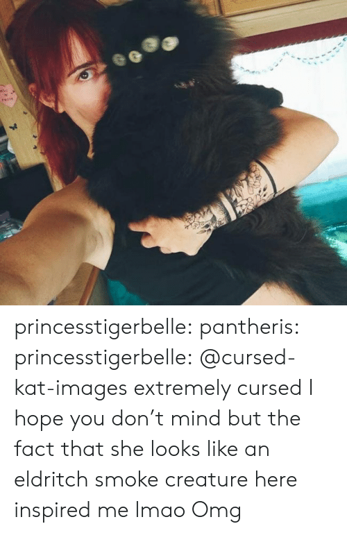 smoke: 41 princesstigerbelle: pantheris:   princesstigerbelle: @cursed-kat-images extremely cursed  I hope you don't mind but the fact that she looks like an eldritch smoke creature here inspired me lmao   Omg