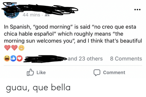 """creo: 44 mins  In Spanish, """"good morning"""" is said """"no creo que esta  chica hable español"""" which roughly means """"the  morning sun welcomes you"""", and I think that's beautiful  and 23 others  8 Comments  Like  Comment guau, que bella"""