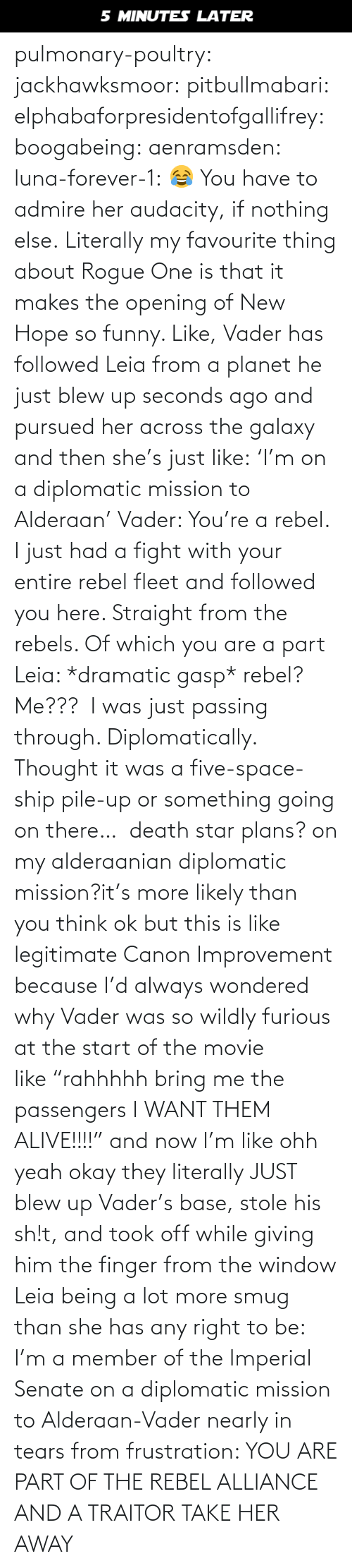 """Blew: 5 MINUTES LATER pulmonary-poultry:  jackhawksmoor:  pitbullmabari:  elphabaforpresidentofgallifrey:  boogabeing:  aenramsden:  luna-forever-1: 😂 You have to admire her audacity, if nothing else.  Literally my favourite thing about Rogue One is that it makes the opening of New Hope so funny. Like, Vader has followed Leia from a planet he just blew up seconds ago and pursued her across the galaxy and then she's just like:'I'm on a diplomatic mission to Alderaan' Vader: You're a rebel. I just had a fight with your entire rebel fleet and followed you here. Straight from the rebels. Of which you are a part Leia: *dramatic gasp* rebel? Me??? I was just passing through. Diplomatically. Thought it was a five-space-ship pile-up or something going on there…  death star plans? on my alderaanian diplomatic mission?it's more likely than you think   ok but this is like legitimate Canon Improvement because I'd always wondered why Vader was so wildly furious at the start of the movie like""""rahhhhh bring me the passengers I WANT THEM ALIVE!!!!"""" and now I'm like ohh yeah okay they literally JUST blew up Vader's base, stole his sh!t, and took off while giving him the finger from the window    Leia being a lot more smug than she has any right to be: I'm a member of the Imperial Senate on a diplomatic mission to Alderaan-Vader nearly in tears from frustration: YOU ARE PART OF THE REBEL ALLIANCE AND A TRAITOR TAKE HER AWAY"""