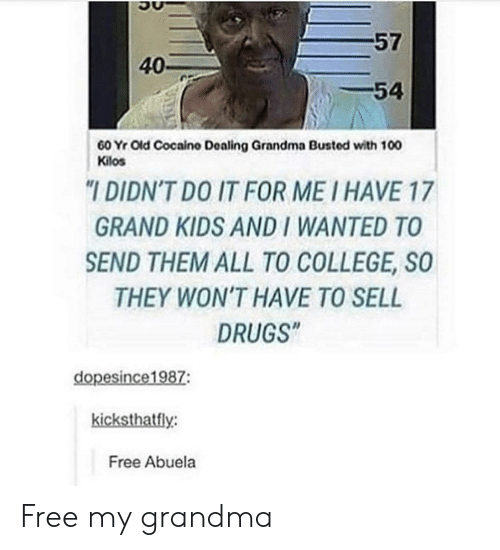 "College, Drugs, and Grandma: 57  40-  -54  60 Yr Old Cocaino Dealing Grandma Busted with 100  Kilos  ""I DIDN'T DO IT FOR ME I HAVE 17  GRAND KIDS AND I WANTED TO  SEND THEM ALL TO COLLEGE, SO  THEY WON'T HAVE TO SELL  DRUGS""  dopesince1987:  kicksthatfly:  Free Abuela Free my grandma"