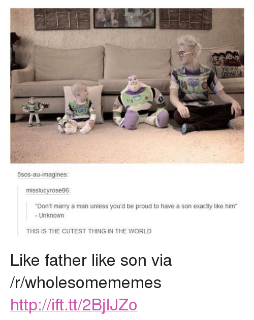 """imagines: 5sos-au-imagines:  misslucyrose96:  Don't marry a man unless you'd be proud to have a son exactly like him""""  - Unknown  THIS IS THE CUTEST THING IN THE WORLD <p>Like father like son via /r/wholesomememes <a href=""""http://ift.tt/2BjIJZo"""">http://ift.tt/2BjIJZo</a></p>"""