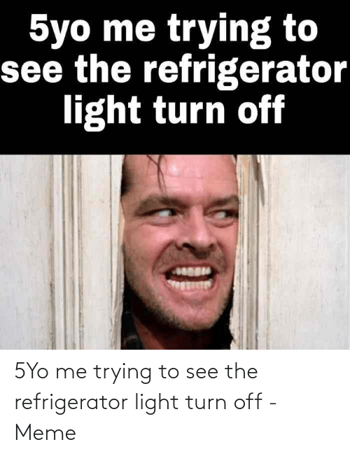 turn off: 5Yo me trying to see the refrigerator light turn off - Meme