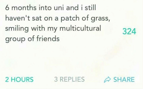 Friends, Sat, and Uni: 6 months into uni and i still  haven't sat on a patch of grass,  smiling with my multicultural  group of friends  324  2 HOURS  3 REPLIES  SHARE