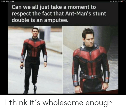 Wholesome: 9%  17:08 Wed 10 Jul  Can we all just take a moment to  respect the fact that Ant-Man's stunt  double is an amputee. I think it's wholesome enough