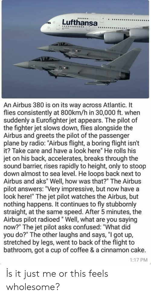 "alongside: 9  An Airbus 380 is on its way across Atlantic. It  flies consistently at 800km/h in 30,000 ft. when  suddenly a Eurofighter jet appears. The pilot of  the fighter jet slows down, flies alongside the  Airbus and greets the pilot of the passenger  plane by radio: ""Airbus flight, a boring flight isn't  it? Take care and have a look here"" He rolls his  jet on his back, accelerates, breaks through the  sound barrier, rises rapidly to height, only to stoop  down almost to sea level. He loops back next to  Airbus and aks"" Well, how was that?"" The Airbus  pilot answers: ""Very impressive, but now have a  look here!"" The jet pilot watches the Airbus, but  nothing happens. It continues to fly stubbornly  straight, at the same speed. After 5 minutes, the  Airbus pilot radioed"" Well, what are you saying  now?"" The jet pilot asks confused: ""What did  you do?"" The other laughs and says, ""I got up,  stretched by legs, went to back of the flight to  bathroom, got a cup of coffee & a cinnamon cake.  1:17 PM İs it just me or this feels wholesome?"