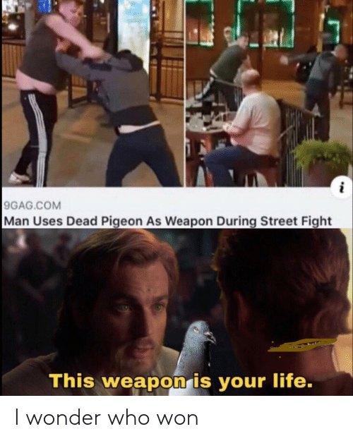 9gag, Life, and Street Fight: 9GAG.COM  Man Uses Dead Pigeon As Weapon During Street Fight  This weapon is your life. I wonder who won