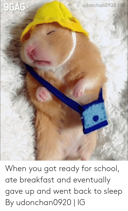 9gag, Dank, and School: 9GAG When you got ready for school, ate breakfast and eventually gave up and went back to sleep  By udonchan0920 | IG