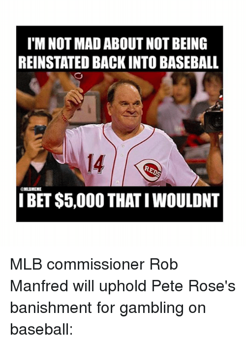 reinstation: I M NOT MADABOUT NOT BEING  REINSTATED BACK INTO BASEBALL  aMLBMEME  BET $5,000 THATI WOULDNT MLB commissioner Rob Manfred will uphold Pete Rose's banishment for gambling on baseball: