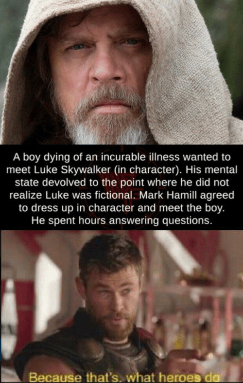 skywalker: A boy dying of an incurable llness wanted to  meet Luke Skywalker (in character). His mental  state devolved to the point where he did not  realize Luke was fictional. Mark Hamill agreed  to dress up in character and meet the boy.  He spent hours answering questions.  Because that's. what heroes do