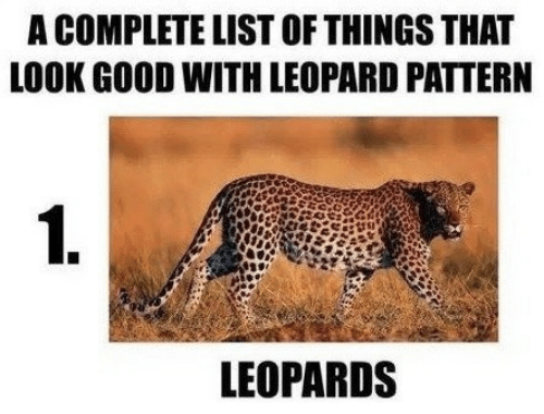 Good, List, and Leopard: A COMPLETE LIST OF THINGS THAT  LOOK GOOD WITH LEOPARD PATTERN  1.  LEOPARDS