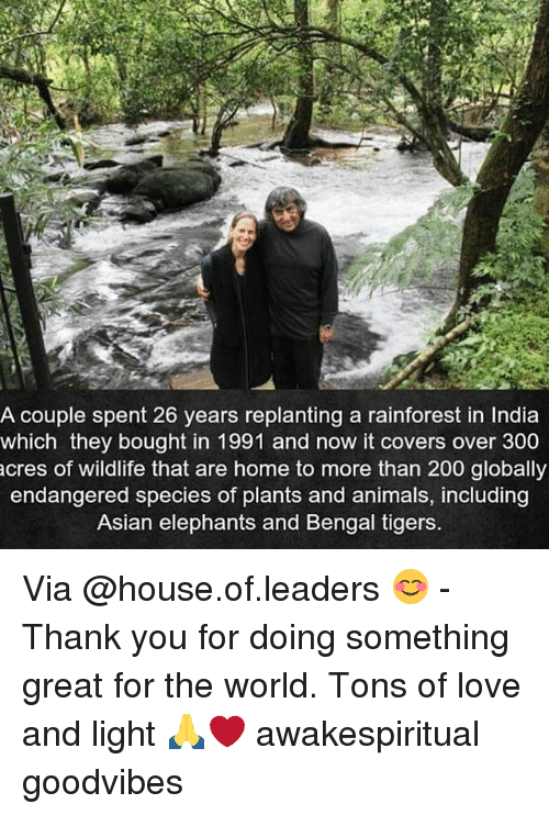 Animals, Asian, and Bailey Jay: A couple spent 26 years replanting a rainforest in India  which they bought in 1991 and now it covers over 300  cres of wildlife that are home to more than 200 globally  endangered species of plants and animals, including  Asian elephants and Bengal tigers. Via @house.of.leaders 😊 - Thank you for doing something great for the world. Tons of love and light 🙏❤️ awakespiritual goodvibes