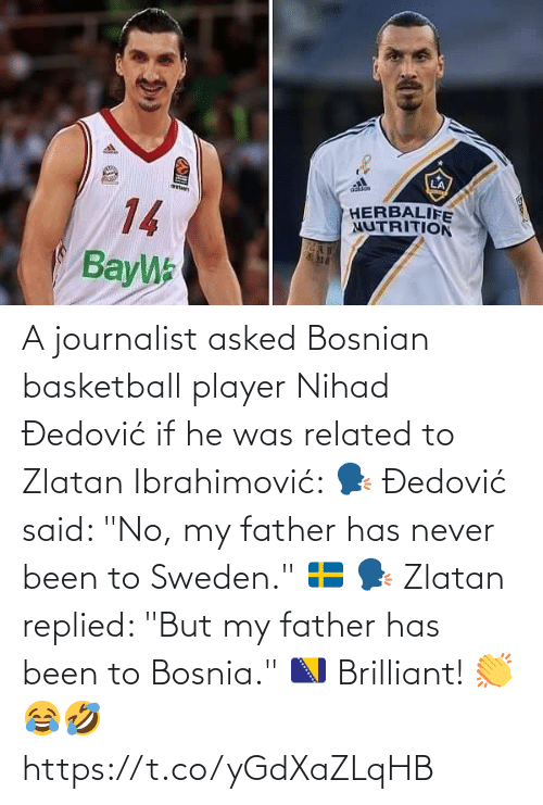 """father: A journalist asked Bosnian basketball player Nihad Đedović if he was related to Zlatan Ibrahimović:   🗣 Đedović said: """"No, my father has never been to Sweden."""" 🇸🇪  🗣 Zlatan replied: """"But my father has been to Bosnia."""" 🇧🇦  Brilliant! 👏😂🤣 https://t.co/yGdXaZLqHB"""