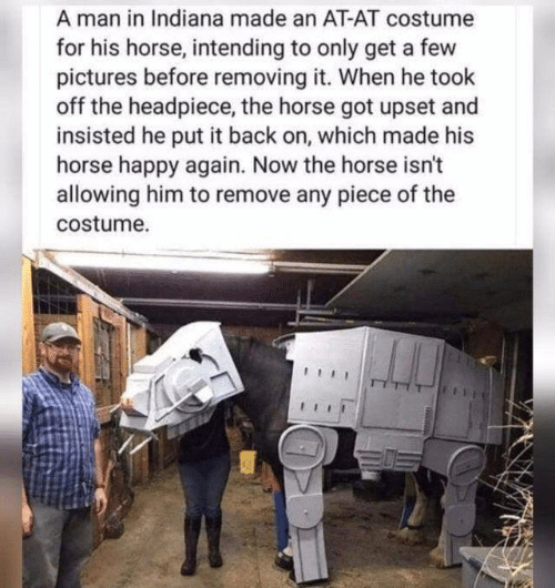 Horse: A man in Indiana made an AT-AT costume  for his horse, intending to only get a few  pictures before removing it. When he took  off the headpiece, the horse got upset and  insisted he put it back on, which made his  horse happy again. Now the horse isn't  allowing him to remove any piece of the  costume.