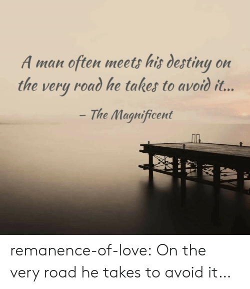 Destiny, Love, and Target: A man often meets his destiny on  the very road he takes to avoid it...  The Magnificent remanence-of-love:  On the very road he takes to avoid it…