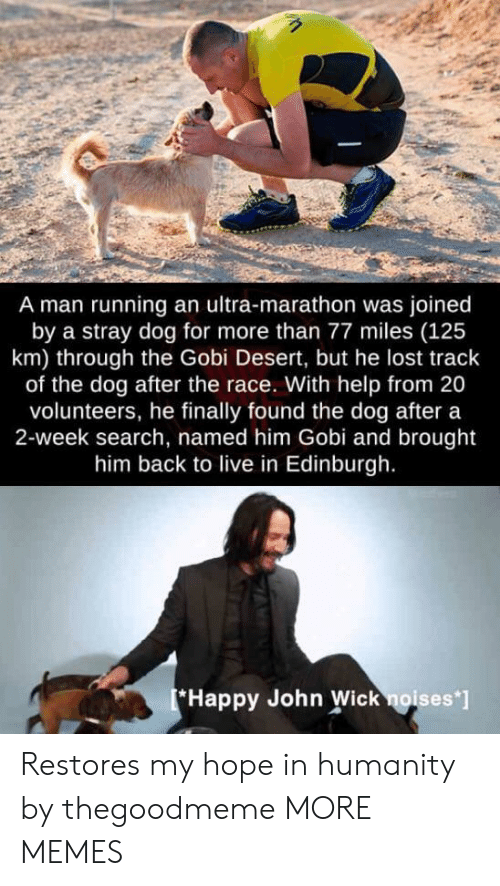 Dank, John Wick, and Memes: A man running an ultra-marathon was joined  by a stray dog for more than 77 miles (125  km) through the Gobi Desert, but he lost track  of the dog after the race. With help from 20  volunteers, he finally found the dog after a  2-week search, named him Gobi and brought  him back to live in Edinburgh.  Happy John Wick noises' Restores my hope in humanity by thegoodmeme MORE MEMES