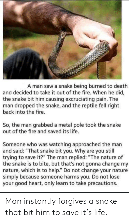 "Fire, Life, and Saw: A man saw a snake being burned to death  and decided to take it out of the fire. When he did,  the snake bit him causing excruciating pain. The  man dropped the snake, and the reptile fell right  back into the fire.  So, the man grabbed a metal pole took the snake  out of the fire and saved its life.  Someone who was watching approached the man  and said: ""That snake bit you. Why are you still  trying to save it?"" The man replied: ""The nature of  the snake is to bite, but that's not gonna change my  nature, which is to help."" Do not change your nature  simply because someone harms you. Do not lose  your good heart, only learn to take precautions. Man instantly forgives a snake that bit him to save it's life."