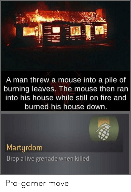 gamer: A man threw a mouse into a pile of  burning leaves. The mouse then ran  into his house while still on fire and  burned his house down.  Martyrdom  Drop a live grenade when killed. Pro-gamer move