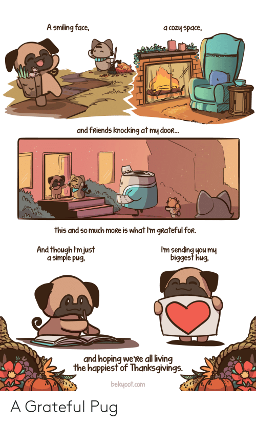 hug: A smiling face,  a cozy space,  and fRiends knocking at my dooR...  this and so much moRe is what I'm gRateful for.  I'm sending you mu  biggest hug.  And though I'm just  a simple pug,  and hoping we'Re all living  the happiest of Thanksgivings.  bekyoot.com A Grateful Pug