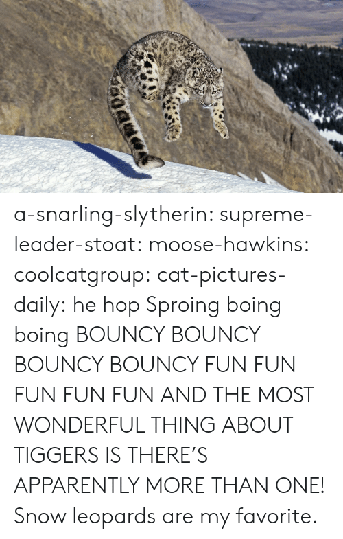 Apparently, Slytherin, and Supreme: a-snarling-slytherin:  supreme-leader-stoat:  moose-hawkins:  coolcatgroup:  cat-pictures-daily: he hop  Sproing boing boing    BOUNCY BOUNCY BOUNCY BOUNCY FUN FUN FUN FUN FUN  AND THE MOST WONDERFUL THING ABOUT TIGGERS IS THERE'S APPARENTLY MORE THAN ONE!   Snow leopards are my favorite.