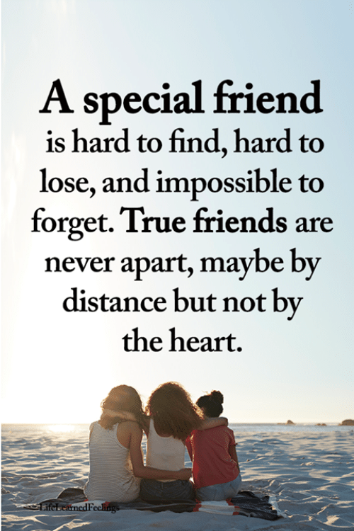 Friends, Memes, and True: A special friend  is hard to find, hard to  lose, and impossible to  forget. True friends are  never apart, maybe by  distance but not by  the heart.  ifebeanedFeekngs