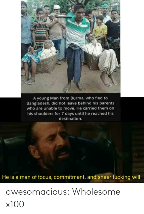 Fucking: A young Man from Burma, who fled to  Bangladesh, did not leave behind his parents  who are unable to move. He carried them on  his shoulders for 7 days until he reached his  destination.  He is a man of focus, commitment, and sheer fucking will awesomacious:  Wholesome x100