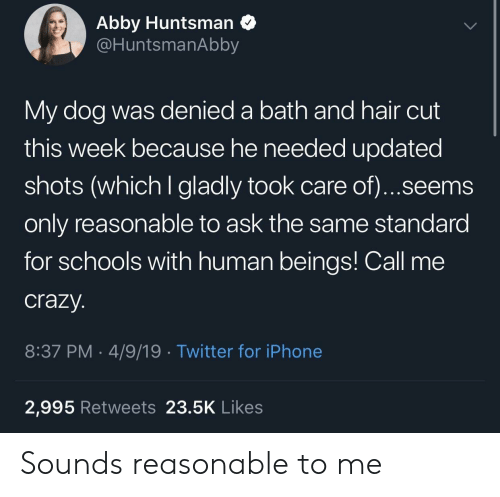 Crazy, Iphone, and Twitter: Abby Huntsman Q  @HuntsmanAbby  My dog was denied a bath and hair cut  this week because he needed updated  shots (which I gladly took care of)...seems  only reasonable to ask the same standard  for schools with human beings! Call me  crazy.  8:37 PM-4/9/19 Twitter for iPhone  2,995 Retweets 23.5K Likes Sounds reasonable to me
